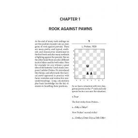 Mastering typical rook endgames - Adrian Mikhalchishin (K-5567)